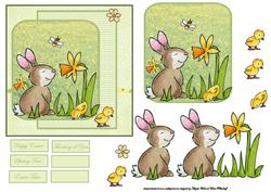 Rabbit Smells the Daffodil Card Front with Topper