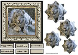 The Snow Leopard 6x6 Card with Pyramid