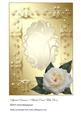 Special Occasion Blank Card with Rose