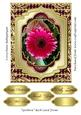 Gerbera Rich Card Front