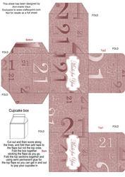 Dusky Pink Age 21 Single Cupcake Presentation Box