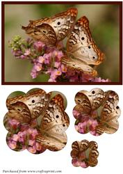 Butterfly Couple Scalloped Pyramid