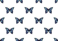 Butterfly Fantasy Backing Paper 1