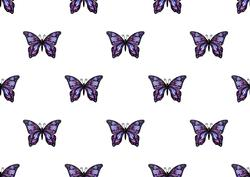 Butterfly Fantasy Backing Paper 2