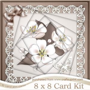 8 x 8 Apple Blossom Twisted Tunnel Card Kit