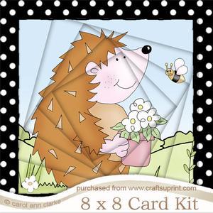 8 x 8 Cute Hegehog Twisted Tunnel Card Kit