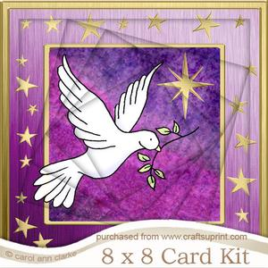 8 x 8 Xmas Dove Twisted Tunnel Card Kit