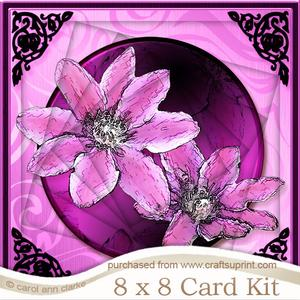 8 x 8 Clematis Twisted Tunnel Card Kit