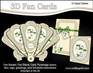 3D Floral Fan Card Apple Blossom with Stand, Gift Card N Box