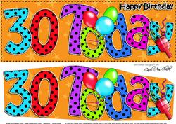 Large Dl 30th Birthday Celebrations Card & 3D Decoupage