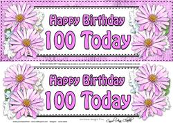Large Dl 100th Birthday Daisies Floral 3D Decoupage