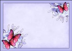 A4 Butterflies & Flowers Insert