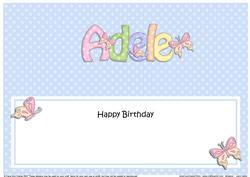 Large Dl Birthday Adele Butterflies Insert