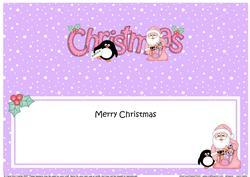 Large Dl Christmas Santa & Penguin Insert