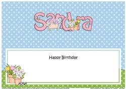 Large Dl Birthday Sandra Gardening Insert