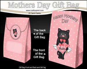 3D Little Cat's Heart for Mum Mothers Day Gift Bag Mini Kit