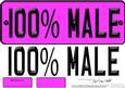 Large Dl 100% Male Novelty Number Plate N 3D Decoupage