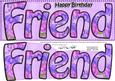Large Dl Birthday Friend Card & 3D Decoupage