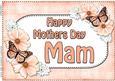 A4 Mothers Day Mam Flowers & Butterflies Card Topper