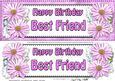 Large Dl Birthday Best Friend Daisies Floral 3D Decoupage