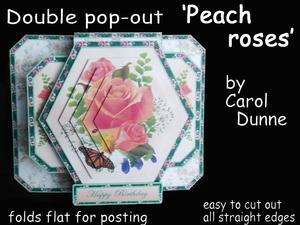 3D Double Pop-out - Peach Roses