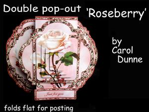 Double Pop-out 'roseberry'