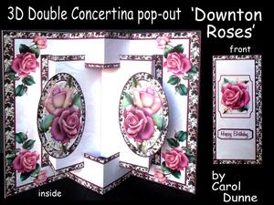 3D Concertina Pop-out - Downton Roses