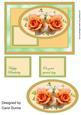 Peach Roses Quick Card