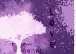 Fantasy Love Paper