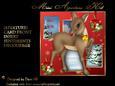 Aperture Mini Kit - Rudolph