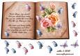 Birthday Butterflies Open Book Sheet
