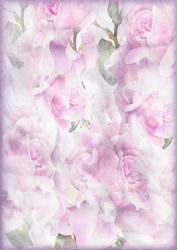 Fantasy Roses Backing Background Paper