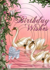 Beautiful Swans Birthday Wishes A4 Inverted Tunnel Card Kit
