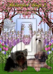 Beautiful Dogs 2 A4 Pyramid Card Kit