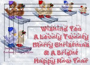 Beautiful Christmas Birds Skiing A4 Inverted Tunnel Card Kit