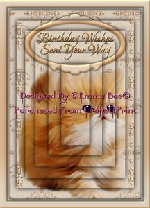 Very Cute Ginger-kitten Birthday-wishes A4 Pyramid Card Kit