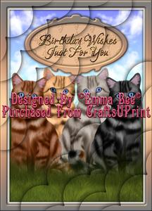 Beautiful Tabby Cats Birthday Wishes Just A4 Deckle Corner-s