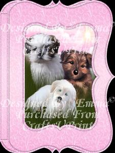 Beautiful Dogs Notelet Card Gift Set 11 of 14