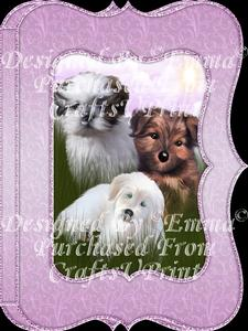 Beautiful Dogs Notelet Card Gift Set 12 of 14