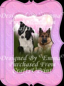 Cute Border Collie & German Shepherd Notelet Card Gift-set 3