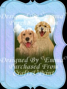 Cute Golden Retriever & Pup Notelet Card Gift Set 1of3