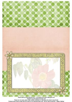 Dog Rose Watercolour Insert - Coral Pink & Pistachio