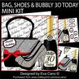 Bag Shoes and Bubbly 30 Today Mini Kit