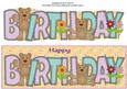Teddies Birthday Large Dl