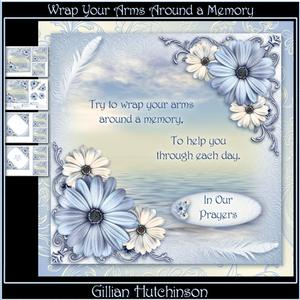Wrap Your Arms Around a Memory