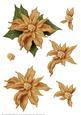Poinsettia Decoupage Sheet Gold