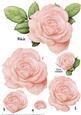 Light Pink Rose Decoupage Sheet