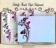 Butterfly Flourish Edged Backgrounds