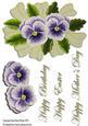 Lacy Violets