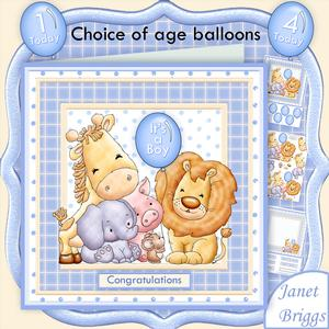 Animal Crew Baby Boy or Birthday Mini Kit with Ages